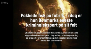 Brandstiftelse